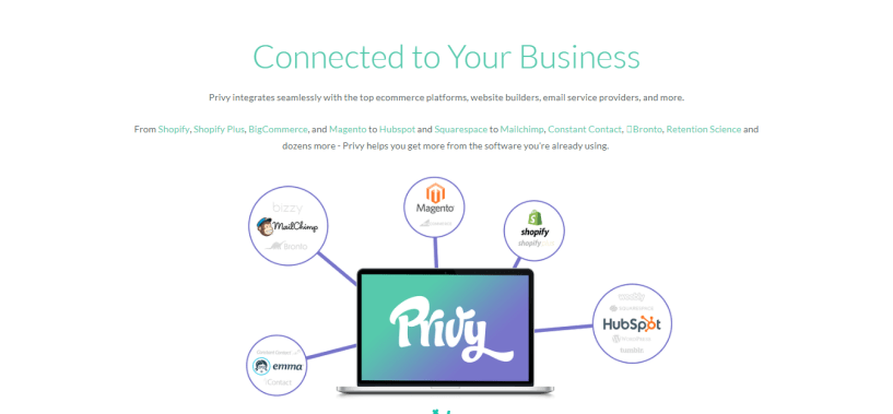Privy Review - connect to your business