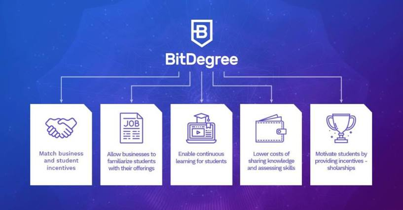 Bitdegree features