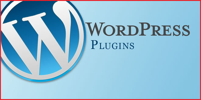 Domain Name Now What? - wp plugins