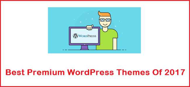 Best Premium WordPress Themes - Entry Picture