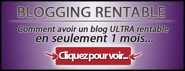 banniere650x250 SP - Blogging Rentable de Sylvain Wealth pour ou contre ?