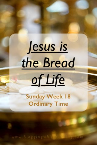 jesus is the bread of life, bread of life, Eucharist, Catholic