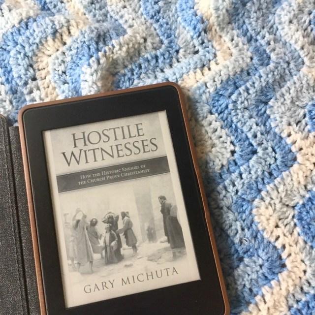 Book Review: Hostile Witness