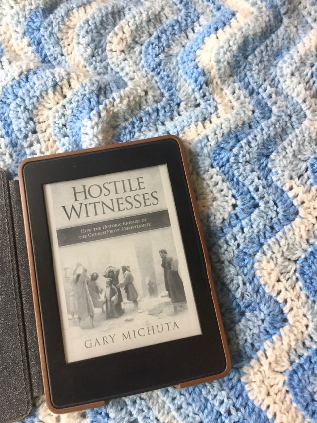 Book Review: Hostile Witness