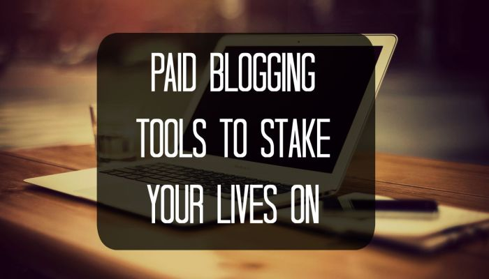 Paid Blogging Tools to Stake Your Lives on