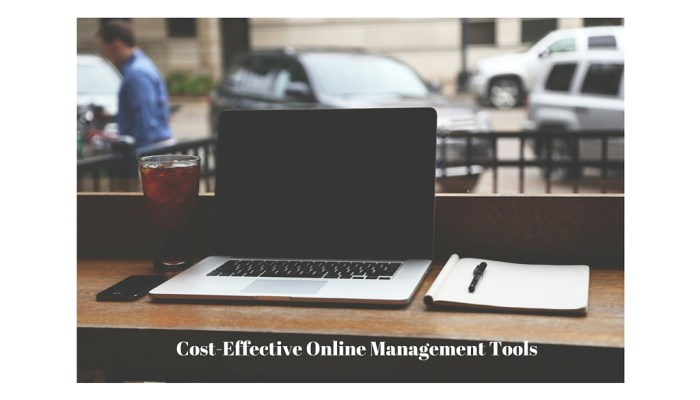 Cost-Effective Online Management Tools for Bloggers and Small Businesses