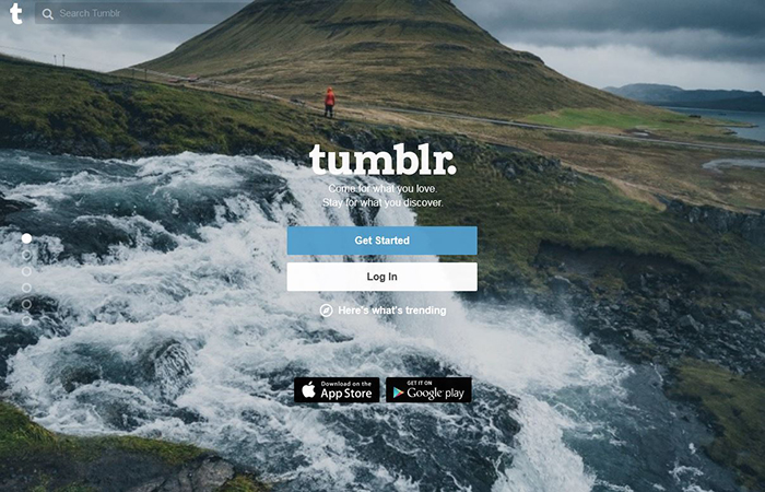 tumblr blogging platform