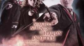 Album de Harry Potter y el Misterio del Príncipe a la venta en Chile !