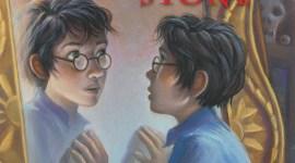 ¿Qué sucedió con Harry Potter y la Cámara Secreta – Edición Aniversario?