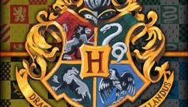 Ayuda a 'Warner Bros. Shop' a Escoger la Próxima Toalla de 'Harry Potter'!