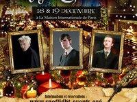 Confirmados Actores de 'Harry Potter' para Evento de Navidad en Francia