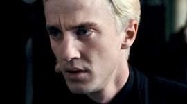 Tom Felton Protagonizará la Cinta 'Attachment' junto a Sharon Stone