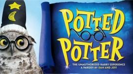 'Potted Potter' Causa Furor entre los Fanáticos de Harry Potter en México