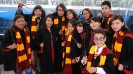 «Harry Potter» El Fandom Más Votado en los Premios mtvU Fandom