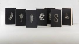 Estudiante Re-Diseña «Mágicamente» los Siete Libros de Harry Potter