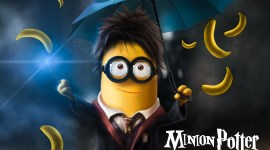 Minions al estilo Harry Potter