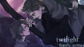 Me enamoré de una fan de Crepúsculo -Parte II