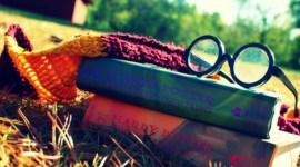 Una chica australiana es capaz de recitar los libros de Harry Potter de memoria