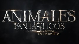 Se revela la trama de Animales Fantásticos y Dónde Encontrarlos