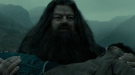 Feliz Cumpleaños, Rubeus Hagrid!