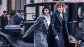 J.K. Rowling reconfirma las tres películas de Animales Fantásticos