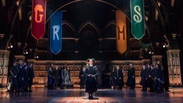 'The Cursed Child' decide no usar lechuzas reales tras escaparse una por el teatro