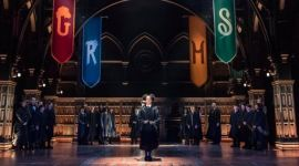 'The Cursed Child' decide no usar lechuzas reales tras escaparse una por el teatro