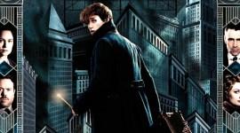 David Yates: 'Animales Fantásticos 2' comenzará rodaje en Julio de 2017 y será «más oscura»