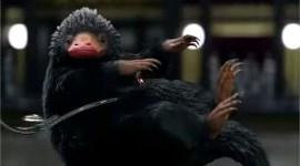Se confirman algunas criaturas mágicas que regresarán en 'Los Crímenes de Grindelwald'