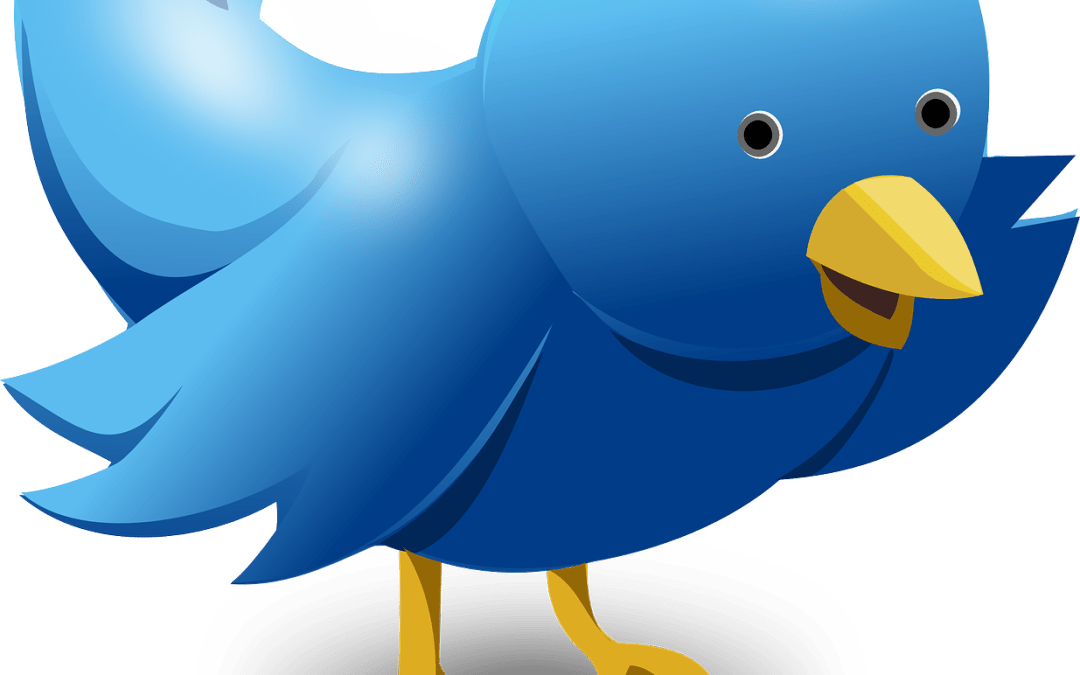 3 strategies to find more leads on Twitter