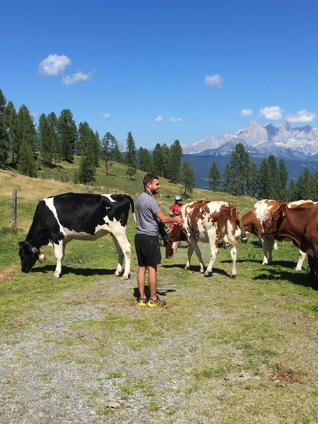 Berge und Kühe, Fotograf und Models