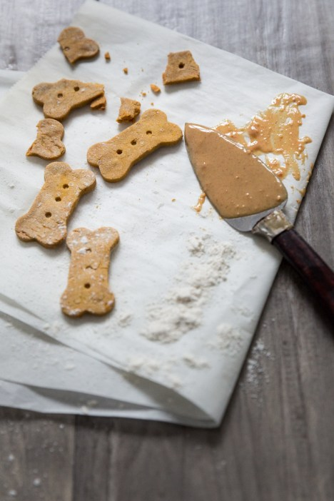 Pumpkin & Peanut Butter Puppy Treats (photo by Anda Panciuk)