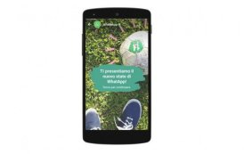 Novità WhatsApp: anche sull'app arrivano ufficialmente le storie!