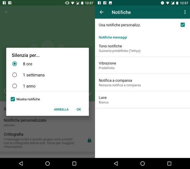 Come silenziare una chat su WhatsApp