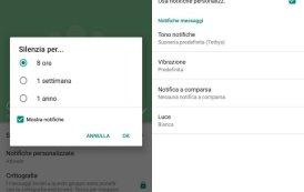 Come silenziare una chat su WhatsApp