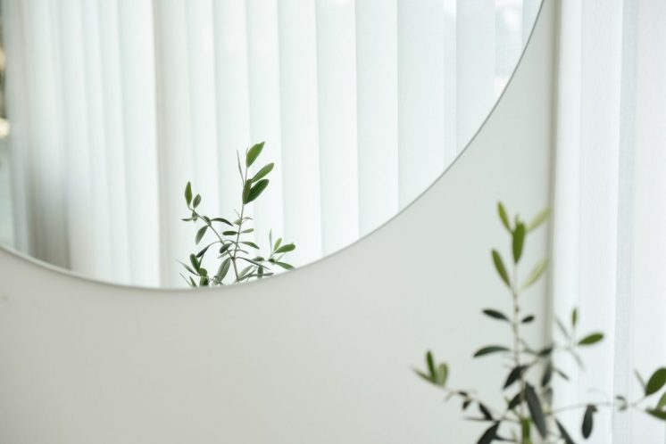 mirror on wall with plant