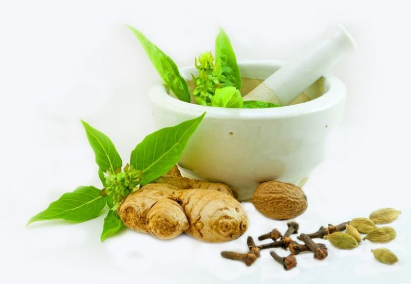 How To Treat Parkinson's Disease Using Herbs