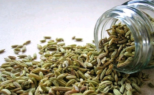 Fennel for Nausea and Vomiting during Pregnancy