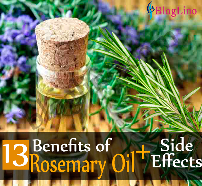13 Best Benefits of Rosemary Oil for Health, Hair and Skin and Side Effects