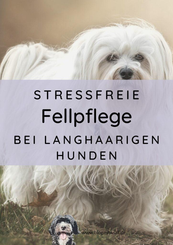 Titelbild zu stressfreie Fellpflege bei langhaarigen Hunden