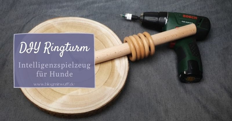 Read more about the article DIY Ringturm für Hunde