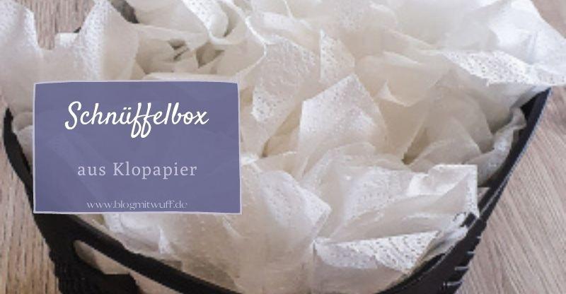 Read more about the article Schnüffelbox aus Klopapierrollen – Einfache DIY-Anleitung