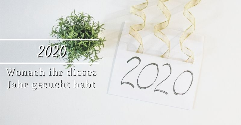 Read more about the article Wonach ihr 2020 gesucht habt