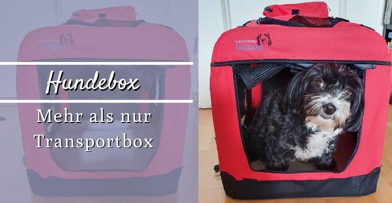 Read more about the article Hundebox – Mehr als nur eine Transportbox