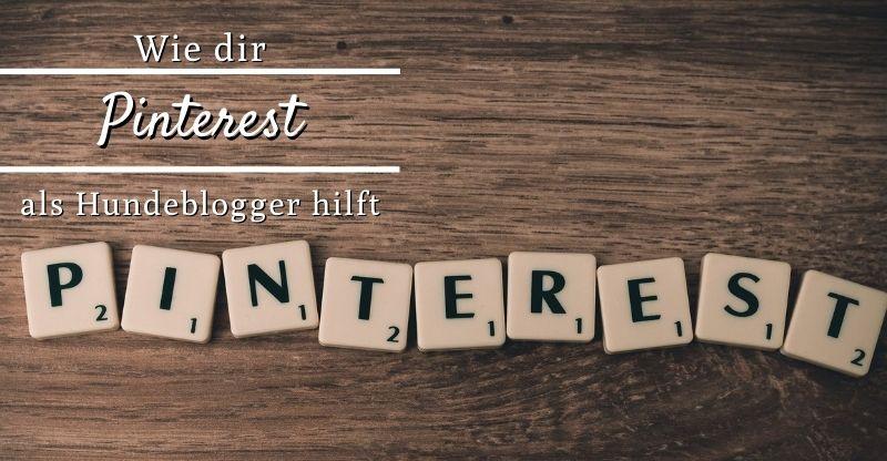 Read more about the article Wie dir Pinterest als Hundeblogger hilft