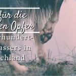 Jahrhundert-Hochwasser in Deutschland – So kannst du betroffenen Tieren helfen