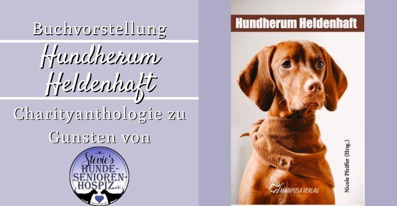 Read more about the article Buchvorstellung Hundherum Heldenhaft von Nicole Pfeiffer