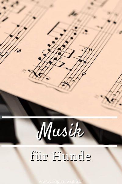 Musik für Hunde Pin