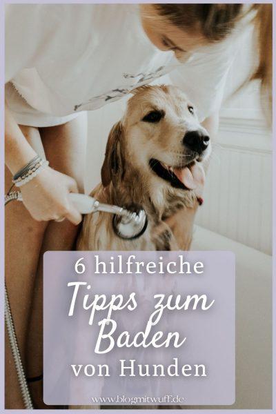 Tipps zum Baden von Hunden