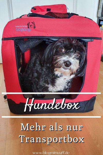 Pin Hundebox